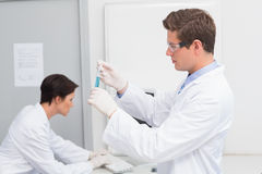 Scientists working attentively with test tube and computer Stock Images