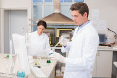 Scientists working attentively with test tube Royalty Free Stock Image