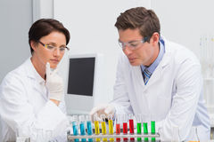 Scientists working attentively with test tube Stock Images