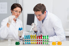 Scientists working attentively with test tube Royalty Free Stock Images