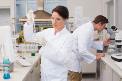 Scientists working attentively with test tube and microscope Stock Image