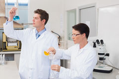 Scientists working attentively together with beakers Stock Photography