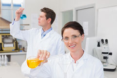 Scientists working attentively together with beakers. In laboratory stock photos