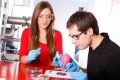 Scientists working Royalty Free Stock Photo
