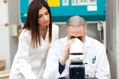 Scientists working in a laboratory Royalty Free Stock Photography