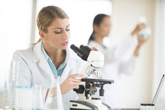 Scientists Working In Laboratory Stock Photo