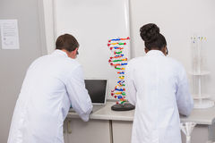 Scientists working with laptop Stock Image