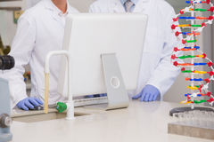 Scientists working on laptop together. In the laboratory Royalty Free Stock Photos