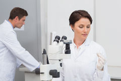 Scientists working with microscope and computer. In laboratory Royalty Free Stock Photo
