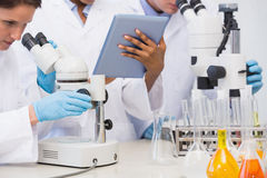 Scientists working with microscope and tablet Stock Images