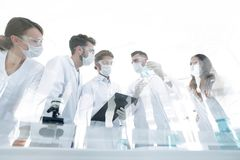 Scientists working with test tubes and microscope in the laboratory. Group of scientists working with test tubes and microscope in the laboratory Royalty Free Stock Photography