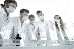 Scientists working with test tubes and microscope in the laboratory. Group of scientists working with test tubes and microscope in the laboratory Royalty Free Stock Photo