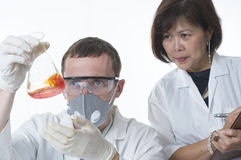 Scientists working together Royalty Free Stock Photography