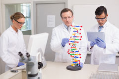 Scientists working together. In laboratory Stock Photo