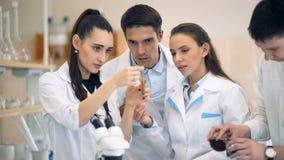 Scienziati che esaminano becher e che discutono nel laboratorio archivi video