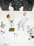 Scienziati che lavorano in un laboratorio immagine stock libera da diritti