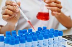 Scienziati che sperimentano nel laboratorio Immagine Stock