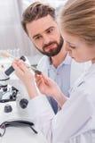 Scienziati dello studente e dell'insegnante che esaminano pianta verde con suolo in provetta Fotografia Stock Libera da Diritti