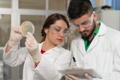 Scienziati in laboratorio con i prodotti chimici che analizzano virus Vaccinatio Fotografia Stock