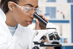 Scienziato afroamericano in cappotto del laboratorio che funziona con il microscopio in laboratorio chimico immagine stock