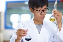 Scienziato asiatico del laboratorio che lavora al laboratorio con le provette fotografia stock libera da diritti