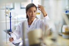 Scienziato asiatico del laboratorio che lavora al laboratorio con le provette fotografie stock libere da diritti
