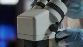Scienziato che esamina materiale biologico, prova del DNA per stabilire paternità stock footage