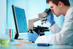Scienziato che lavora al laboratorio Immagini Stock