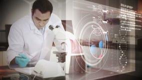 Scienziato che osserva in un microscopio video d archivio