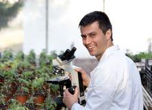 Scienziato con il microscopio in serra Immagine Stock