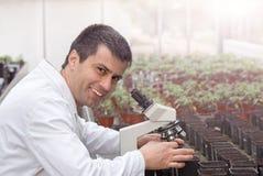 Scienziato con il microscopio in serra Fotografie Stock Libere da Diritti