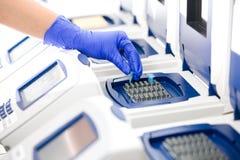 Scienziato con la copiatura del DNA, Fotografia Stock