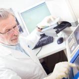 Scienziato di vita che ricerca in laboratorio. Fotografia Stock