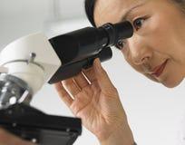 Scienziato e microscopio immagini stock libere da diritti