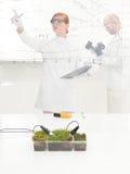 Scienziato femminile che controlla un esperimento della pianta immagine stock libera da diritti