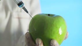 Scienziato geneticamente modificato Experimenting Injecting della frutta stock footage