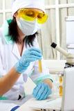 Scienziato in laboratorio che analizza liquido giallo in provetta Fotografia Stock Libera da Diritti