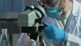 Scienziato maschio che lavora con il microscopio nel laboratorio dell'industria farmaceutica archivi video
