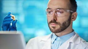 Scienziato maschio professionista sicuro del primo piano medio che tiene il microchip del silicio archivi video