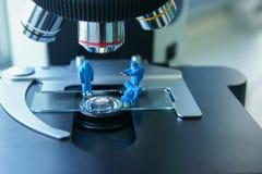 Scienziato miniatura At Work della gente Fotografia Stock Libera da Diritti