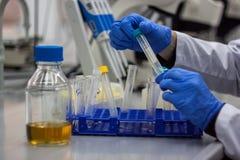 Scienziato moderno che lavora nel laboratorio biotecnologico Fotografie Stock