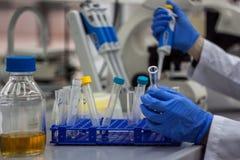 Scienziato moderno che lavora nel laboratorio biotecnologico Fotografia Stock Libera da Diritti