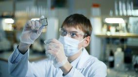 Scienziato professionista che tiene e che osserva il micro chip archivi video