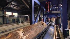 Scierie, industrie de bois de charpente - ligne de coupe, machines banque de vidéos