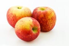 Scilate äpple Royaltyfri Bild