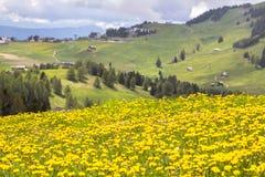 Sciliar nelle nuvole, Tirolo del sud, Italia Fotografie Stock