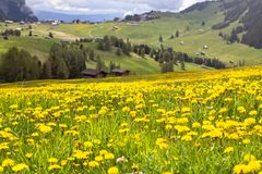 Sciliar nelle nuvole, Tirolo del sud, Italia Fotografie Stock Libere da Diritti