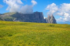 Sciliar Schlern góra jest górzystym grupą dolomity lokalizować w alcie Adige w Bolzano prowinci, Włochy Tutaj s obrazy royalty free