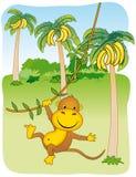 Scimmia che pende da un'edera Royalty Illustrazione gratis