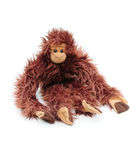 Scimmia coccola Fotografia Stock Libera da Diritti